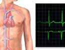 Καρδιοαναπνευστική αντοχή – Λειτουργική ικανότητα